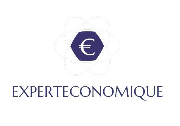 Expert Économique